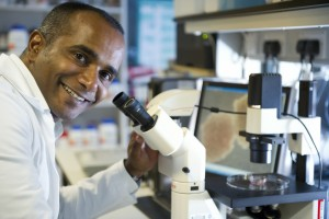 Cancer researchers uncover new insight into MLL translocated leukaemia