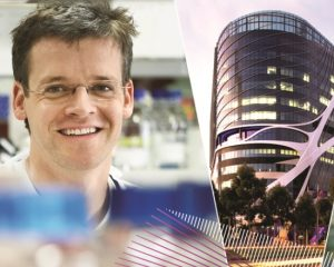 New pathway for blood cancer therapies