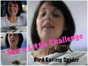 Deb want's to challenge you to Live A Little!