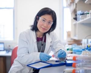 Researchers design blood test to determine colon cancer treatment