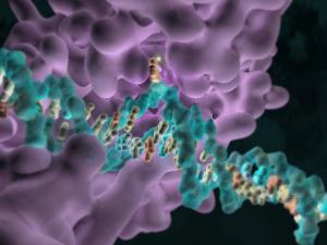 Epigenetics: Cancer researcher's new tool for precision medicine