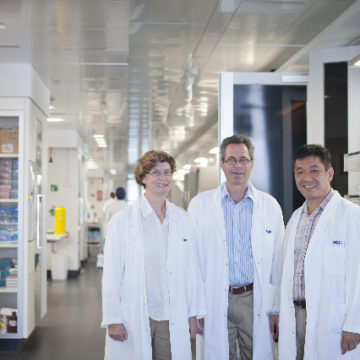 Treatment for breast cancer enhanced with anti-Leukaemia compound