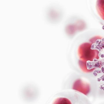 Key cancer-fighting gene's secret weapons revealed