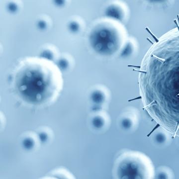 Potential new cancer treatment a step closer